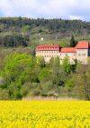 Burg Creuzburg
